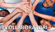 box_collaboratori