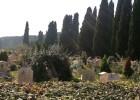 """Servizio navetta per il cimitero """"Prima Porta"""" – 2014"""