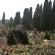 PrimaPorta_cimitero
