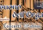 Il Suono dell'Organo – Concerti Natale 2009