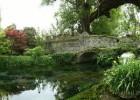 Gita di pasquetta: Giardini di Ninfa