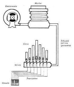 Schema organo