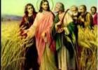 XVI Domenica del Tempo Ordinario (Anno A)