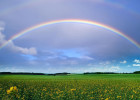 L'arcobaleno come simbolo di pace (Bicentenario 3-2015)