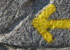 Cinque passi per un percorso di COMUNIONE, CONDIVISIONE E CORRESPONSABILITÀ