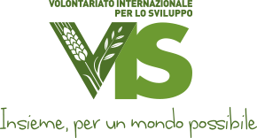 logo_vis